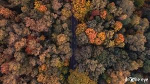 Droga jesienią Gliwice zdjęcie z drona drOne eye