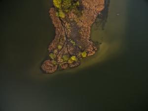dzierzno gliwice jezioro wiosna stopa
